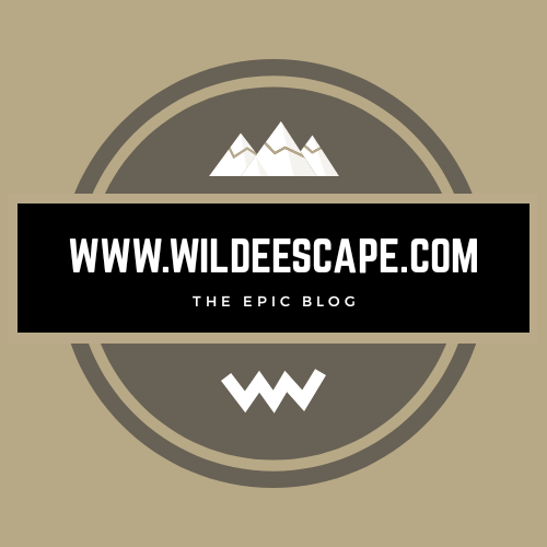 WildeEscape logo 2019