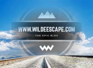 Wilde Escape Logo-Road