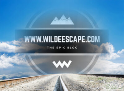 Wilde Escape Logo-Road
