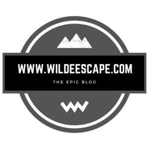 Wilde Escape-Gry and blk logo