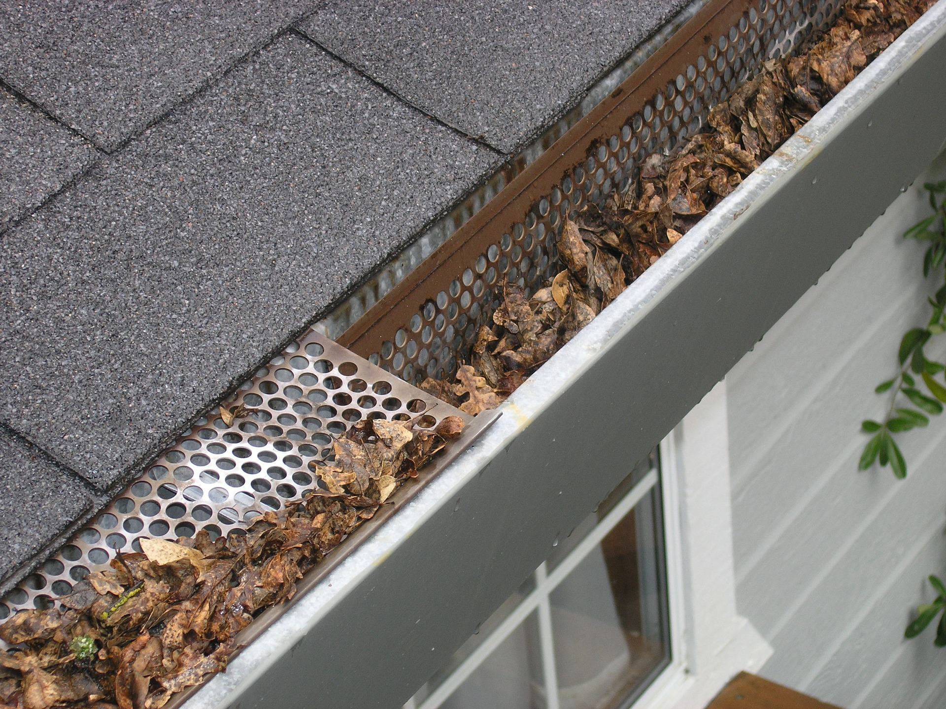 gutter-guard-and-leaves
