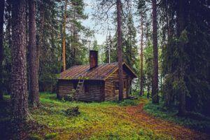 log-cabin-in-woods