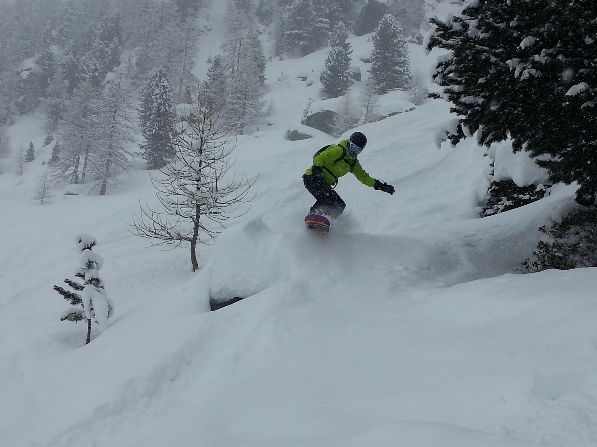 snowboard-through-trees