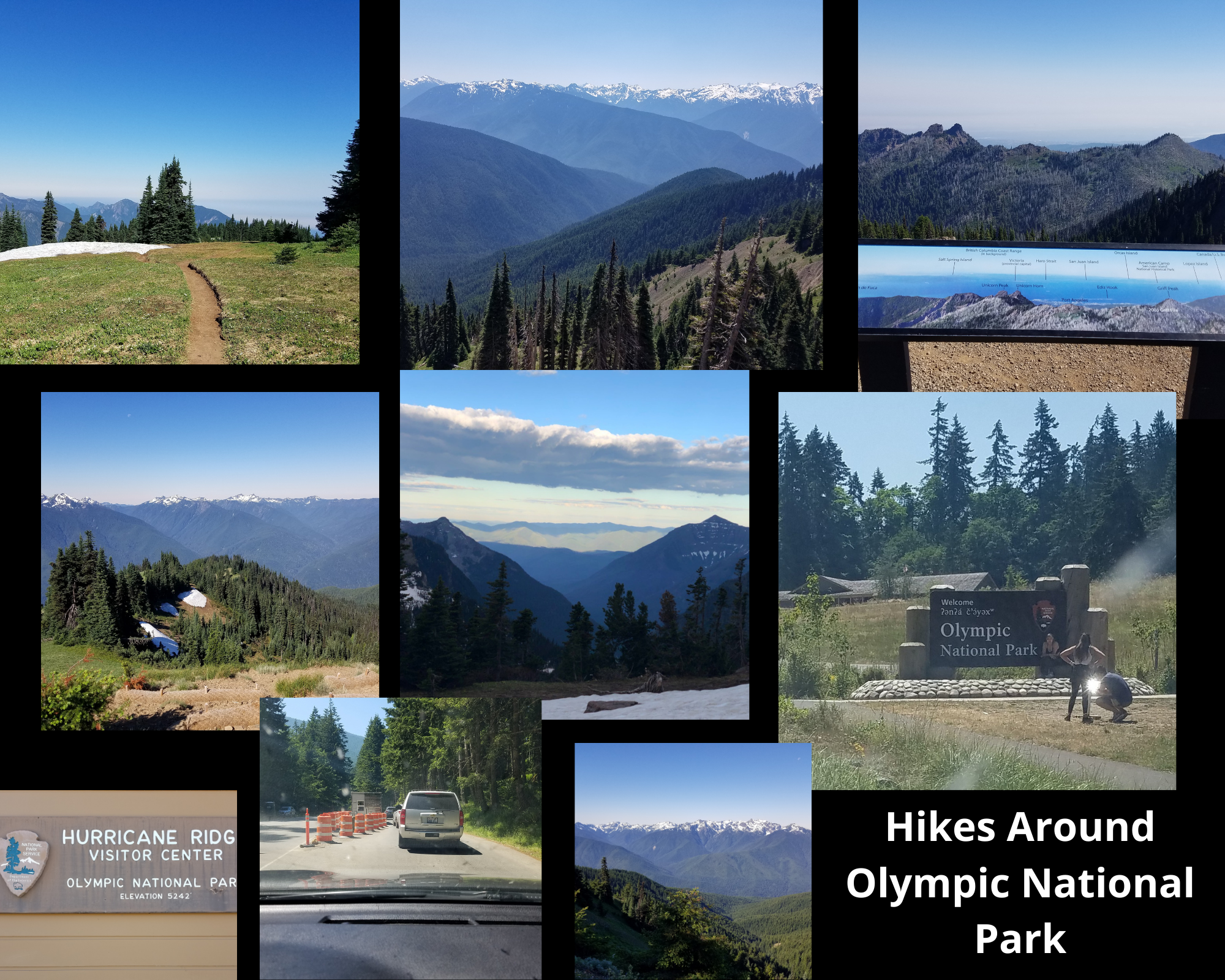 Hikes-around-olympic-national-park
