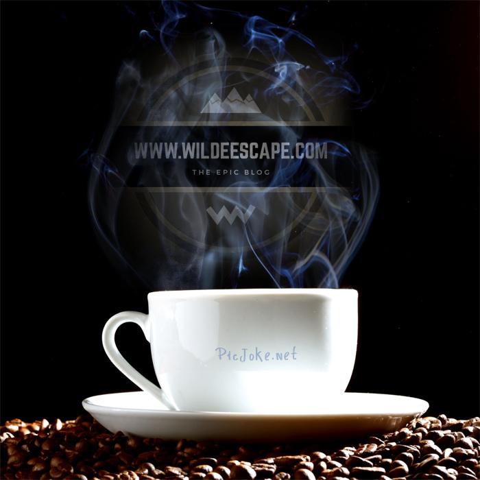 wilde-escape-and-coffee