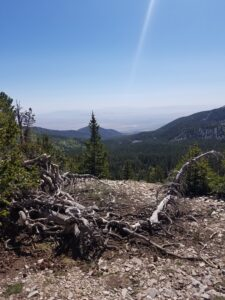Wheeler-Peak-photo-heading-up