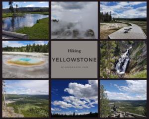 Yellowstone-hike-photos