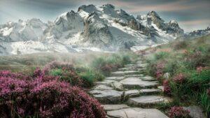 mountain-landscape-rock-trail
