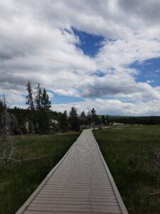 path-photo-in-yellowstone